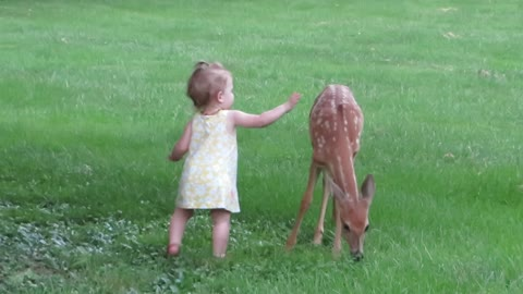 Kate made a new friend tonight! (Kate meets Bambi)