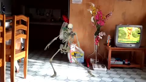 Funny Skeletoon Dance