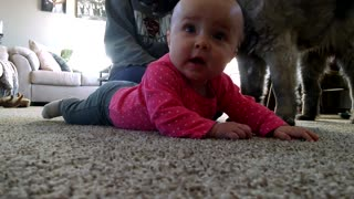 Adorable baby trying to crawl - Video