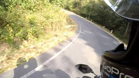 Unsuspecting Biker Crosses Paths With Unexpected Bear