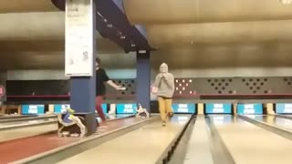 Grey hoodie slides into bowling pins - Video
