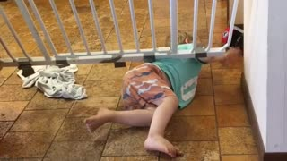 Little kid determined to get through the child safety gate  - Video