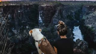 Woman Rescues A Dog In Africa And Travels The World With Her - Video