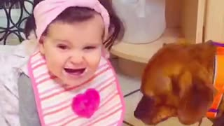 Doggie kissing baby  - Video