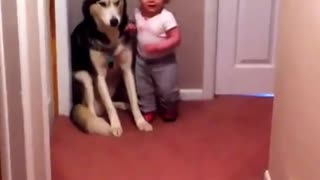 Toddler Terrified of Vacuum Runs to Dog for Protection