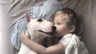 Dog and Boy Fall Asleep Together