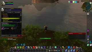 World of Warcraft Classic Druid going it rough
