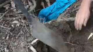 When They Found This Fawn Stuck In A Hole, They Didn't Think Twice About Rescuing It - Video