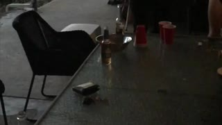 Once in a Lifetime Beer Pong Shot - Video