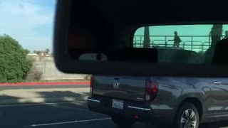 Guy carries longboard standing up in truck bed - Video