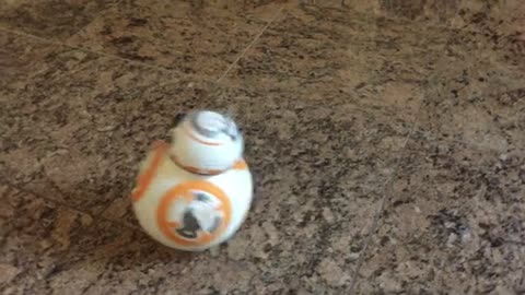 The BB8 Droid