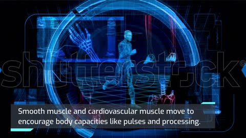 Skeletal muscle is most opinionated as muscle
