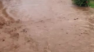 Hawaii Experiencing Flooding After Storm Olivia - Video