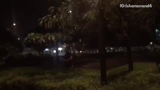 Guy runs and jumps into bushes at night  - Video