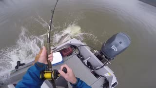 Jumping Big Fish - Video