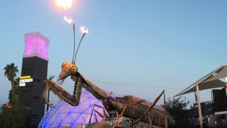 Awesome Fire Throwing Praying Mantis Sculpture - Video