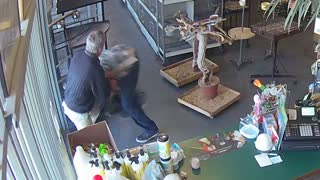 Criminal tries to steal parrot, gets beatdown from 70-year-old shop owner - Video