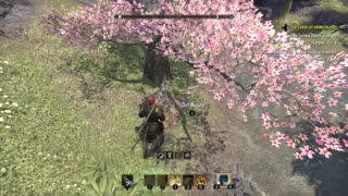 ESO Auridon Treasure Map II Location