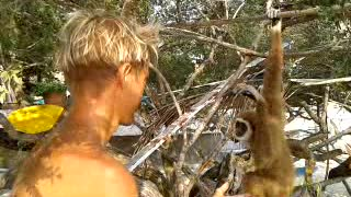 Funny monkey plays with hair - Video