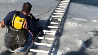 Saving a Dog from a Semi-Frozen Lake - Video