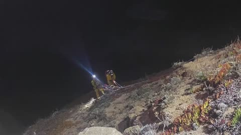Woman survives 250 foot foot call off cliff while trying to avoid a parking ticket