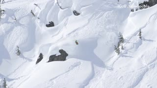 Music skiier going down mountain goes directly into tree - Video
