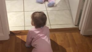 Identical twin baby girls crawl and chase each other for the first time - Video