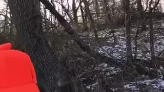 Hunters Rescue a Fawn Trapped on Ice - Video