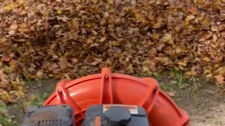 Fall leaves with Billy Goat blower