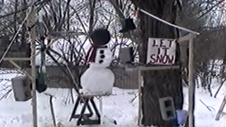 Man Creates Snowman-Destroying Machine - Video