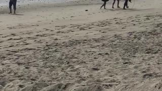 Guy filming behind two girls and guy with surfboard on beach - Video