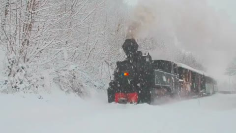 The magic sound of a Train Steam in Carpathian Mountains