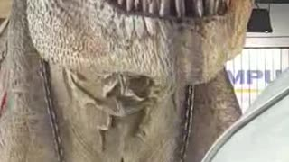 T-Rex Aren't Really Extinct They Have Just Been Stuck In Traffic For 65 Million Years - Video
