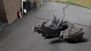 There is a dragon