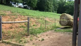 Moving round hay bale without a spear