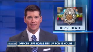 Police Horse Dies After Officer Forgot … - Video
