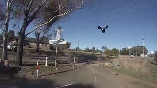 Swooped! Commuting in Canberra during Spring - Video
