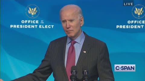 Biden Smears Trump, Cruz, Hawley By Comparing Them to Nazi Propagandist