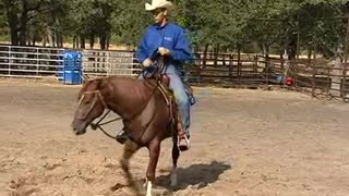 Teach Your Horse To Spin Correctly - Video