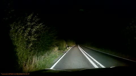 Lucky Deer Narrowly Avoids Collision with Car