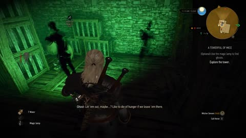 The Witcher 3: A Towerful of Mice part 1
