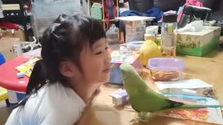 Parrot and Little Girl Are The Best Of Friends