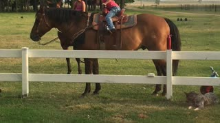 Innovative Little Girl Finds Way Back On Horse - Video