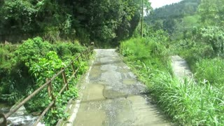 Bus Crossing A Bridge In The Blue Mountains Of JAMAICA | Jason Asselin  - Video