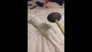 Woman Is Terrified Of Dirty Toilet Plunger - Video