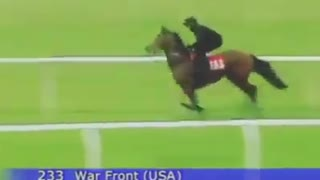 Watch: This Horse Gallops At Full Speed!! - Video