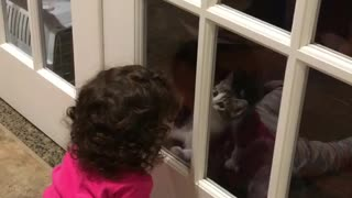 Kittens & Kids  - Video