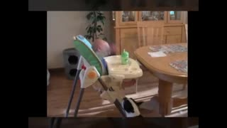 Synthesis dogs frolic with baby - Part 1 - Video