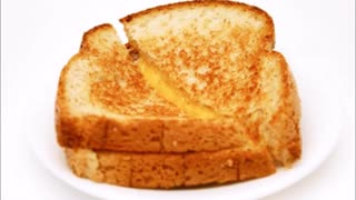 Grilled cheese song