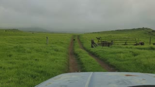 Day Out On The Ranch Free Rang  - Video